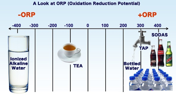 orp of alkaline water